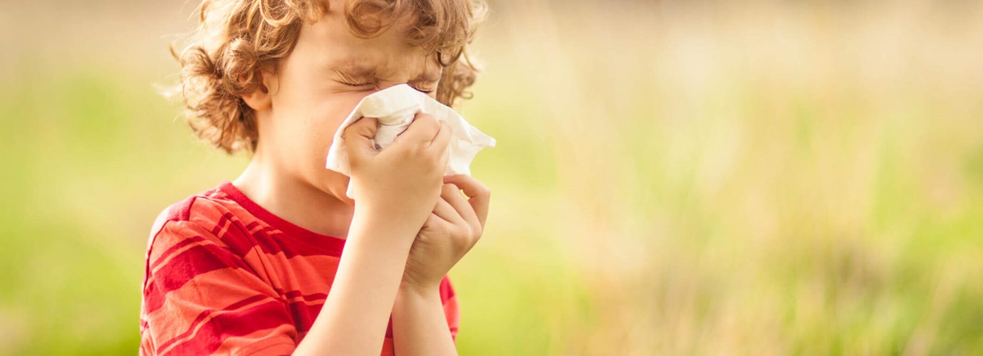 natural remedies for hayfever