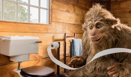 toilettenpapier ohne rolle