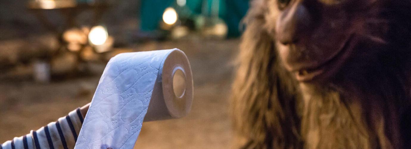 Cea mai moale hârtie igienică, cu o nouă generație de pernuțe absorbante*