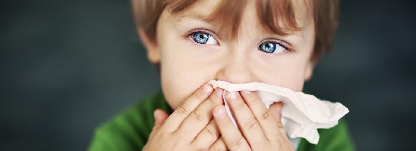 Prašina Alergija Dom Lijekovi