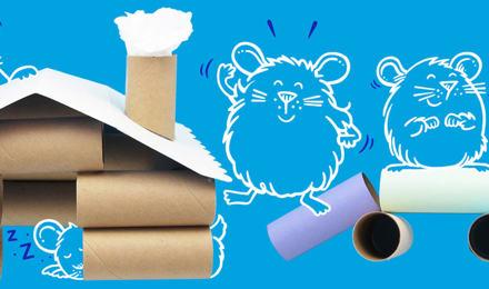 Rennmaus- und Hamster-Spielzeug selber machen