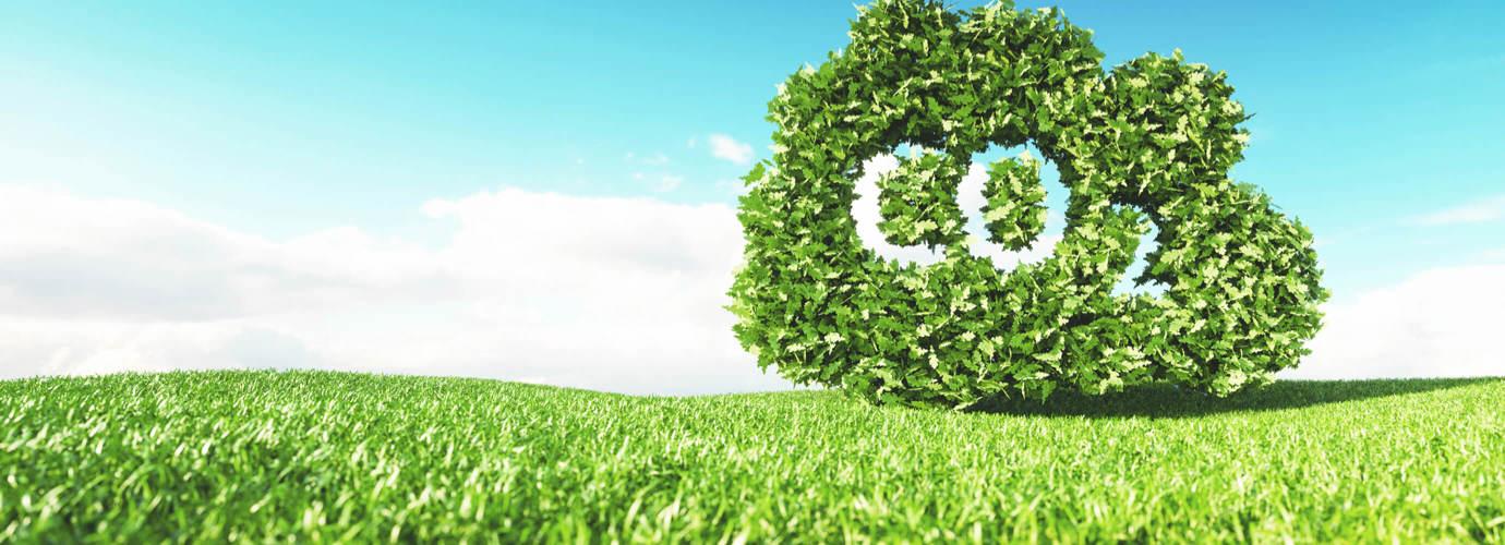 Ελαχιστοποίηση του αποτυπώματος άνθρακα των προϊόντων μας