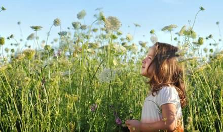Молодая девушка, которой могут понадобиться средства от сенной лихорадки, стоит в солнечный день в поле с большим количеством высоких, диких цветов