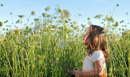 Egy fiatal lány, aki lehet, szénanátha jogorvoslatok ő állt, egy napsütéses napon, egy mező tele magas, vadvirágok