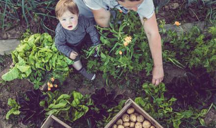 Ребенок учится, как быть более экологичным с его родителями в саду