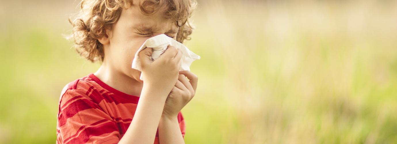5 természetes segítség pollenallergia ellen