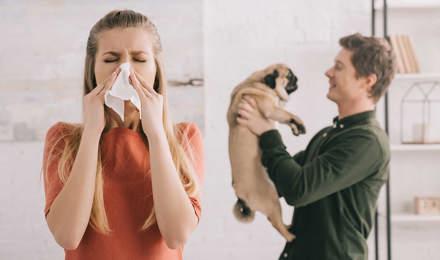 A nő tüsszög, míg a férfi tartja a mopszot a kezében a háttérben