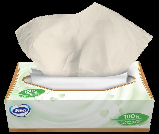 Zewa Natural Soft – Gondoskodás neked és gondoskodás a természetnek