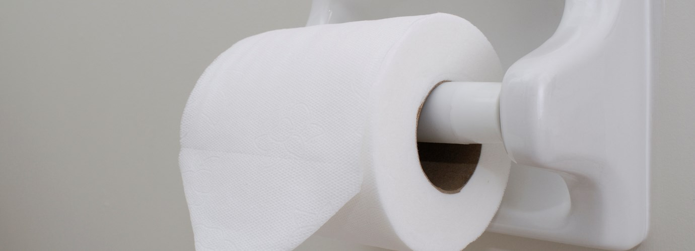 Basteln mit Toilettenpapier: Origami falten