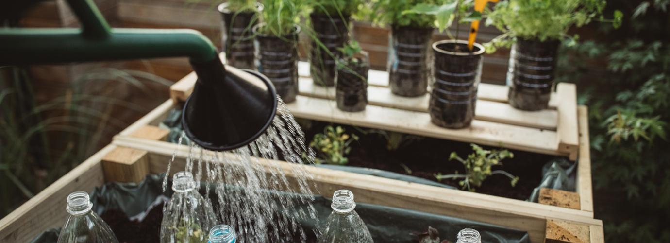 Csökkentés és újrahasznosítás otthoni zöldségtermesztéssel